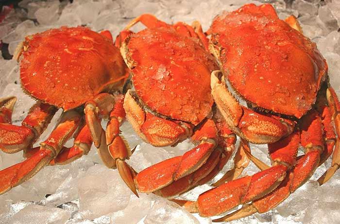 Crab2-PHSFD